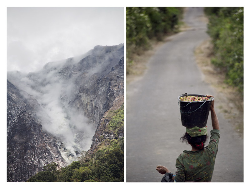 (left) Crater of Sibayak Mountain. The volcanic mineral add nutrition to the soil and bring unique character to Sumateran coffee.(right) A lady harvests her coffee.