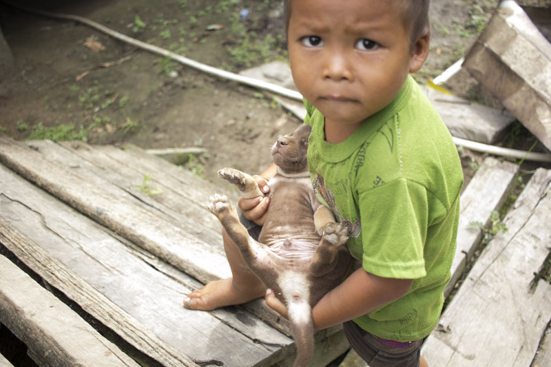 13 June 2020.